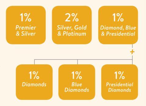 Leadership Bonus - Paid monthly to reward leadership. Seven percent of global volume divided among leadership ranks.