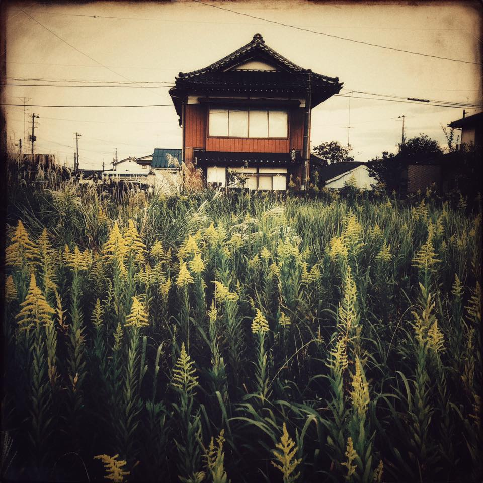 Update from  #Fukushima   Today I entered  #Odaka  for the first time by train, the single railway that now connects the town to the rest of  #Japan , narrowly cutting between forests and golden fields of rice made brilliant in the setting sun. In 2013 when I came here the first time the tracks were covered over in primal vines and the station was filled with rusting bicycles with cob webs the undulated in the breeze.  After nearly 7 years of documenting life here, this journey represents my last trip to Fukushima in regard to the upcoming film. I've been so fortunate to have been able to share these with all of you here and I remain so thankful for your support.  In the days following the meltdown there was a lot of talk about Fukushima's legacy—but legacies, by definition, take time and while even 7 years cannot adequately describe the fate of Fukushima, at the very least we have a better understanding of the complexity rhat constitutes life here.  Regarding what I saw here today, it's a challenge to reconcile my memories of the desolation following the meltdown because it felt so permanent and heavy. But with time that changed as all things do. Odaka historically escaped the worst and of all the places that were affected it it is now the furthest along in returning to something that resembles the town it once was. Still, in the time it was in the exclusion zone and then when residents still could not return, so many houses fell into ruin never to be lived in again. However, what does remain is the tremendous heart of people here trying to find a way forward. It's complex and there is no one blanket description that can describe what life is like here, but taken together the pieces add up.  As a near full moon rose this evening I took a walk through the town to see what it's like now. First, there are cars again making the streets feel almost busy, but the town is still nowhere what it once was. Of the 12,000 former inhabitants 2,000 have returned, I'm told (this 