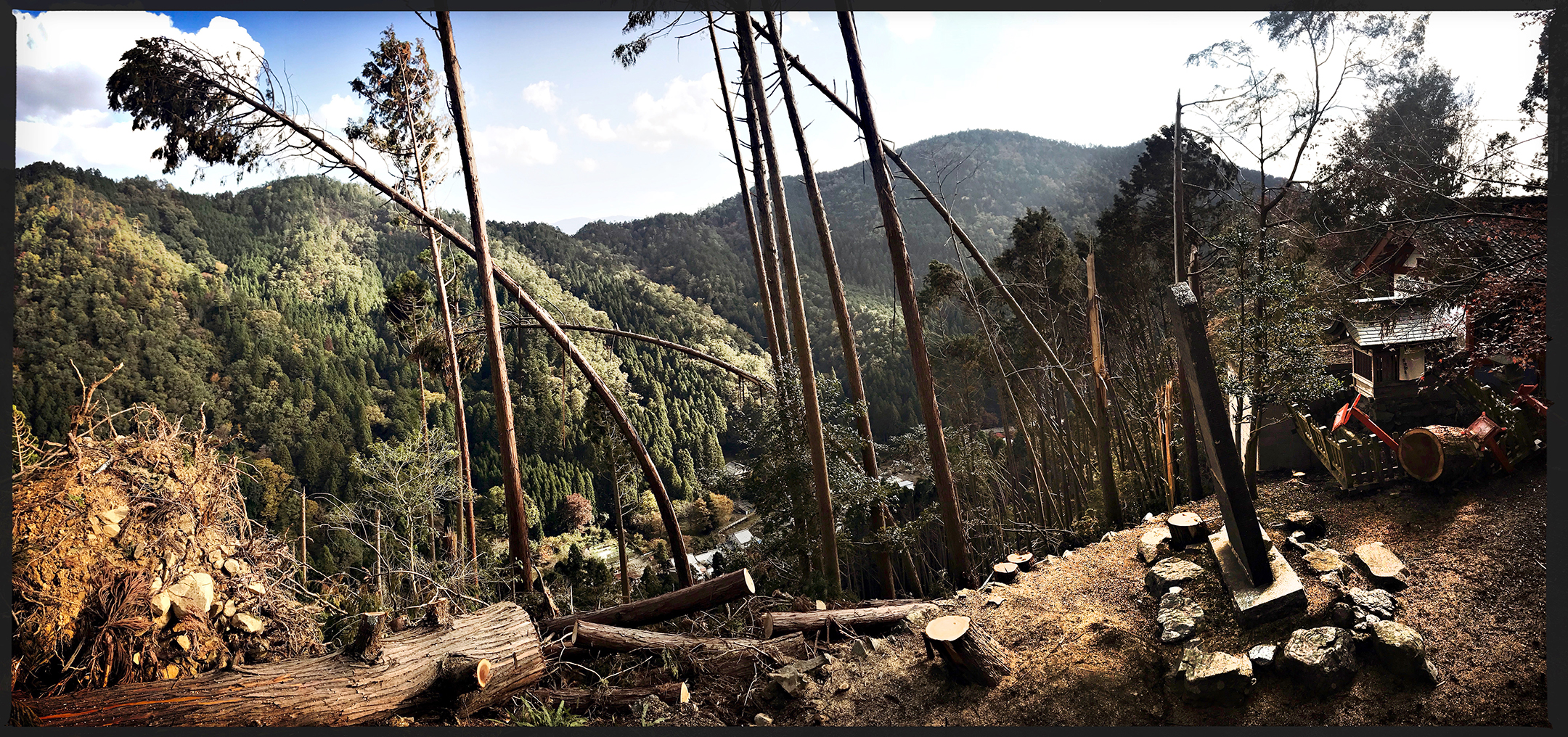The battered landscape of Kurama-dera. The water from typhoon rushed down the mountainside with violent force creating an avalanche of felled trees and destroyed ancient shrines that is such an important part of the cultural heritage of Kyoto.