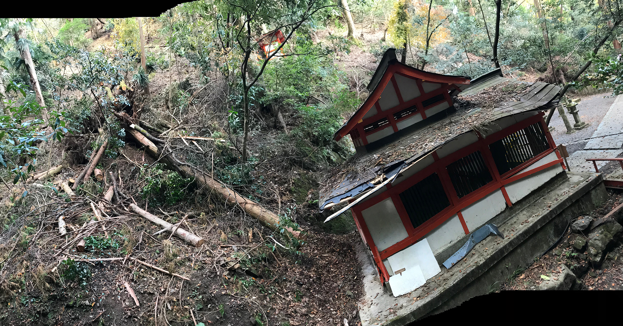 A panoramic of the battered landscape of Kurama-dera. The water from typhoon rushed down the mountainside with violent force creating an avalanche of felled trees and destroyed ancient shrines that are such an important part of the cultural heritage of Kyoto.