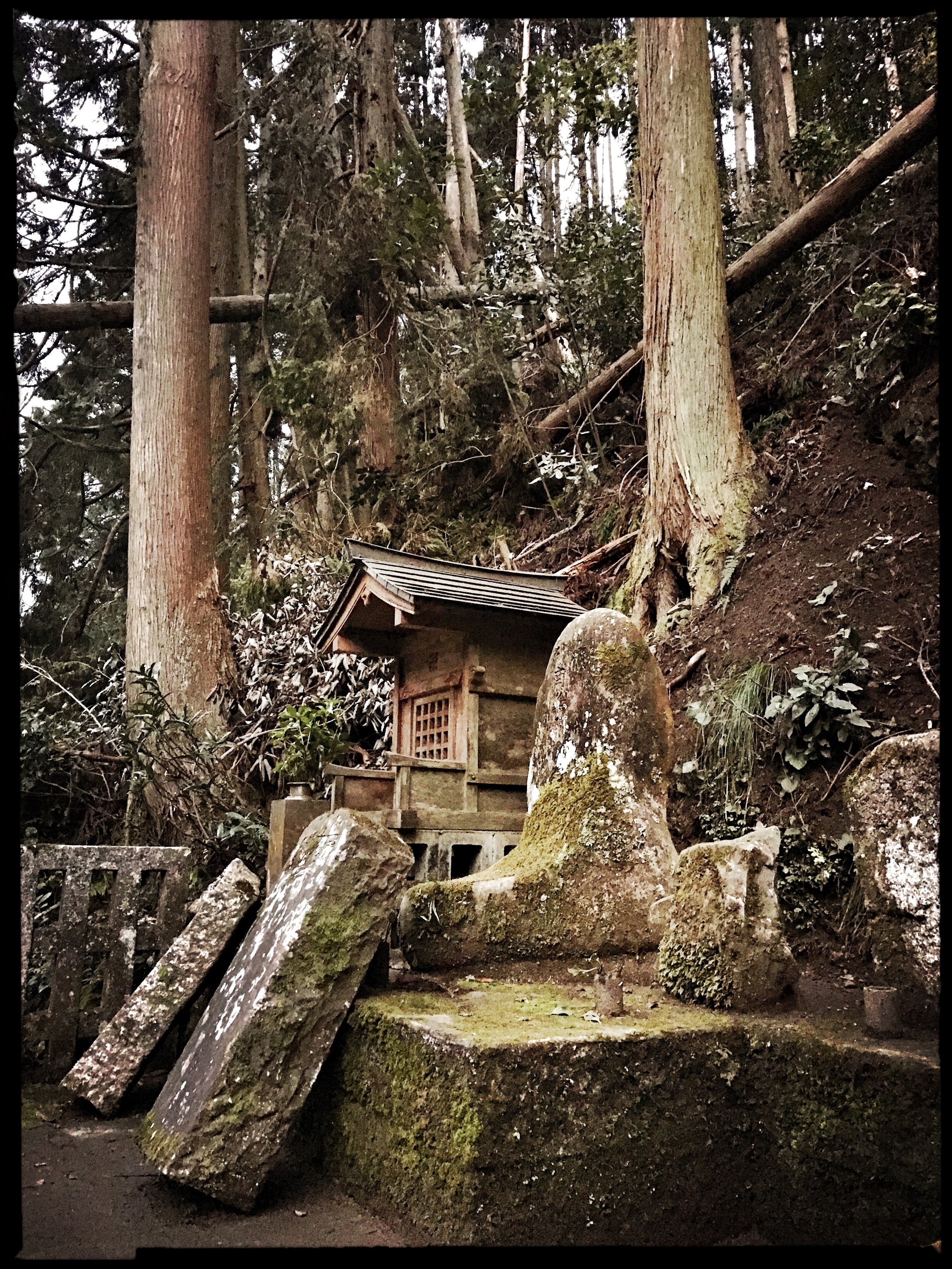 A damaged shrine along the road that leads to the temple grounds.
