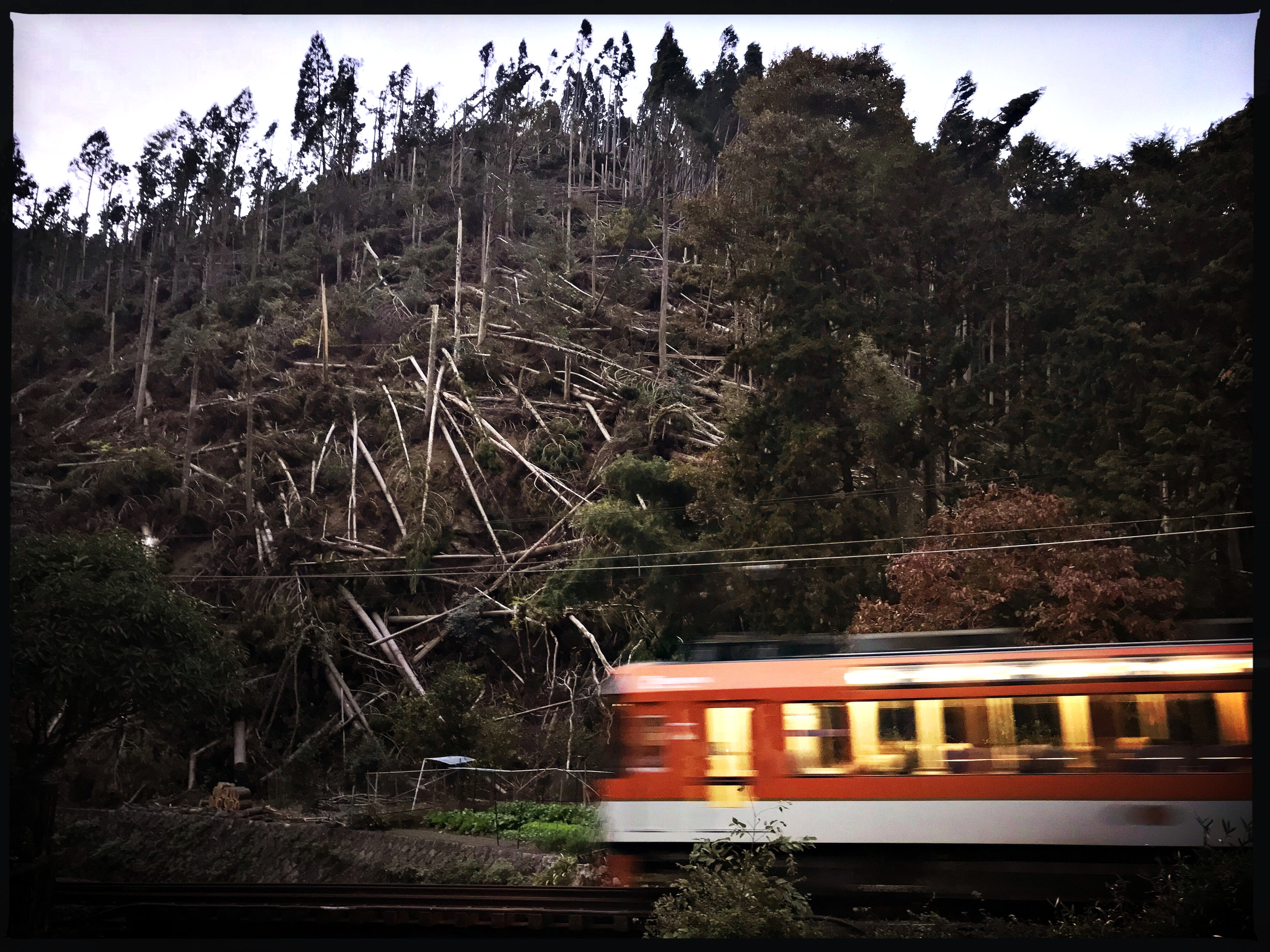 One stop away from Karuma dera, a train passed by a mountain shorn of its trees.
