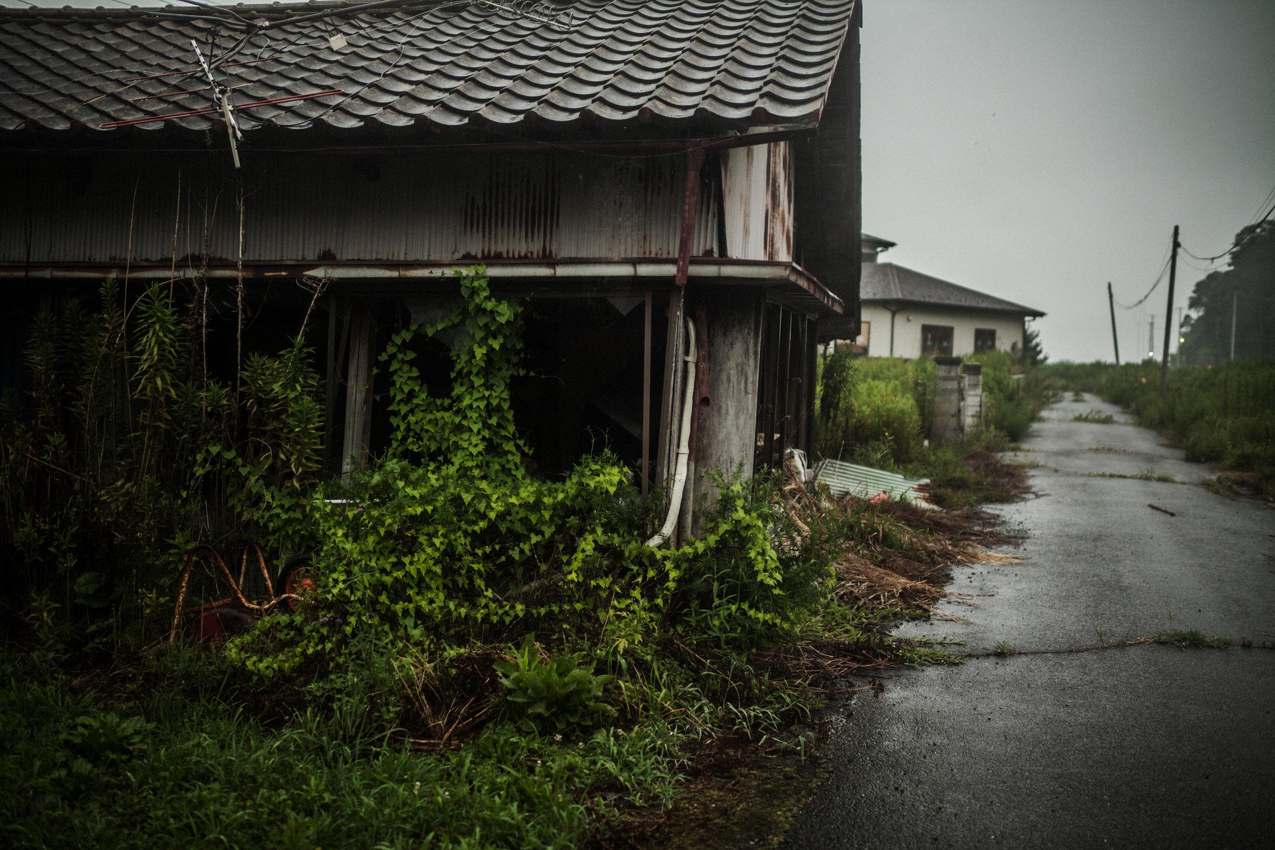 わが里は 荒れ寂びにけり 音もなく セシウムのふる 町のかなしさmy old homenow a deserted ruin–the sadness of a townwhere Cesium rains downwithout a sound - 半杭 螢子 (福島県 2011年11月)Keiko Hangui, Fukushima November 2011
