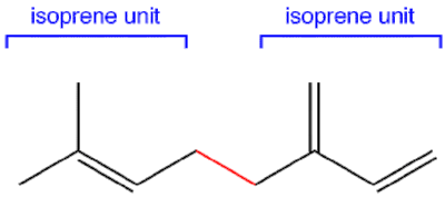 This figure shows how two isoprene units form a bond to become a bigger molecule.