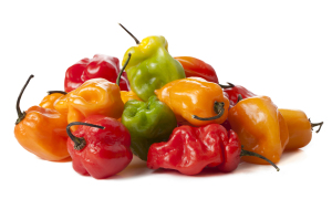 - Scotch Bonnet peppers