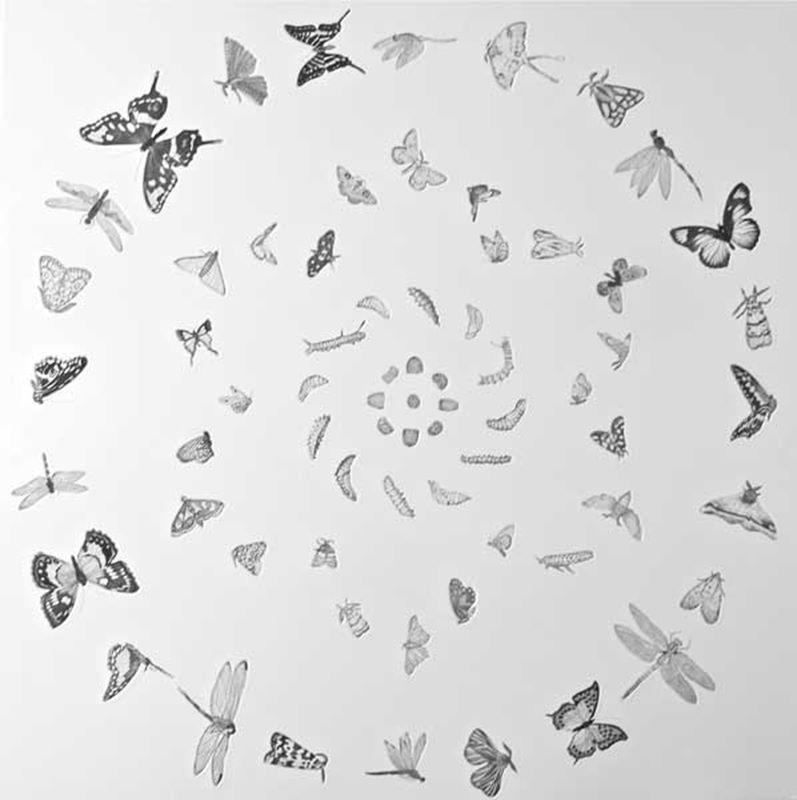 Mandala for New Beginnings (2013)
