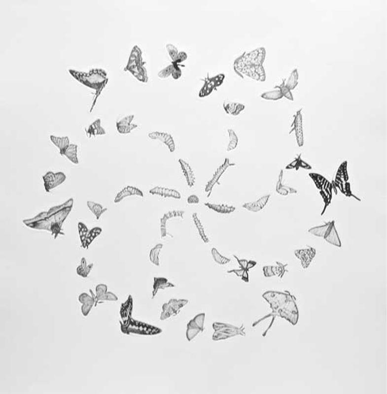 Mandala for Possibilities (2013)