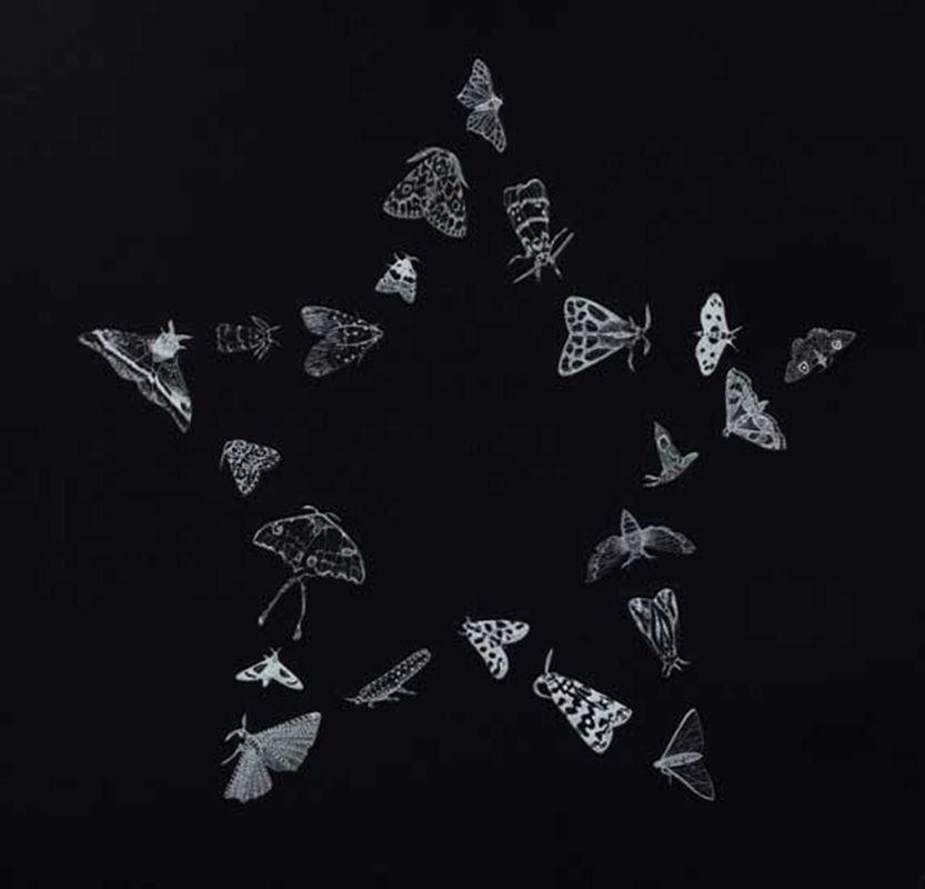 Stellar (2nd edition, black) (2011)