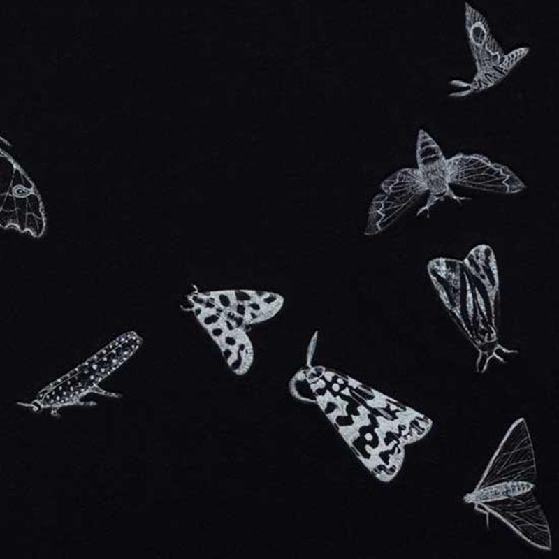 Stellar (2nd edition, black) (2011) - Detail