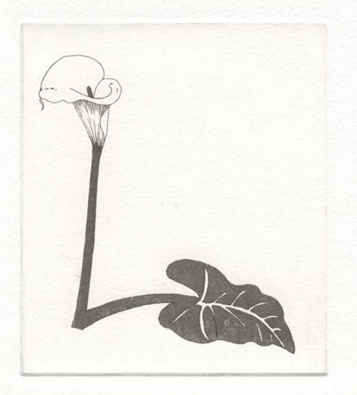 Fynbos A - Z  (Lily (Arum)) (2012)