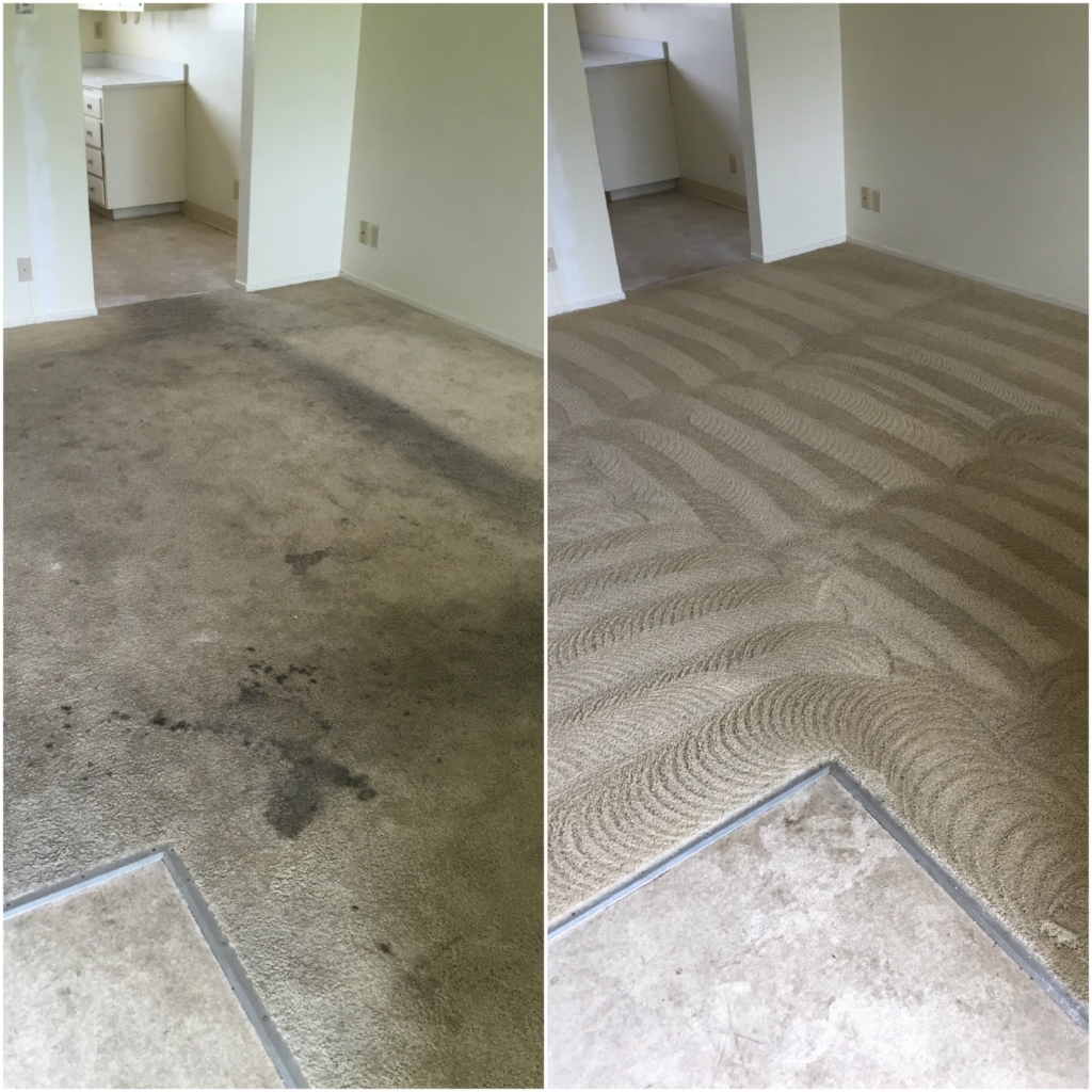 "Our ""Restorative Cleaning"" process brings thrashed carpets back to life!"