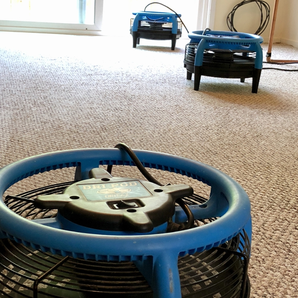 We use air movers while we clean for a faster dry time!