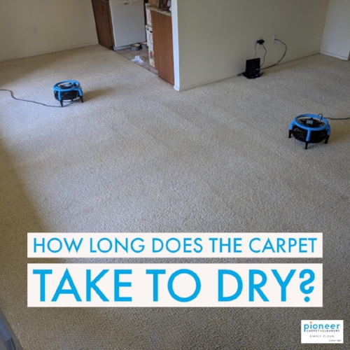 How long does the carpet take to dry.JPG