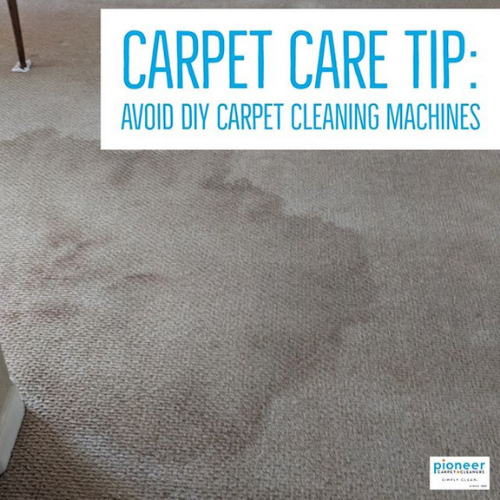 Carpet Care Tip Avoid DIY Machines