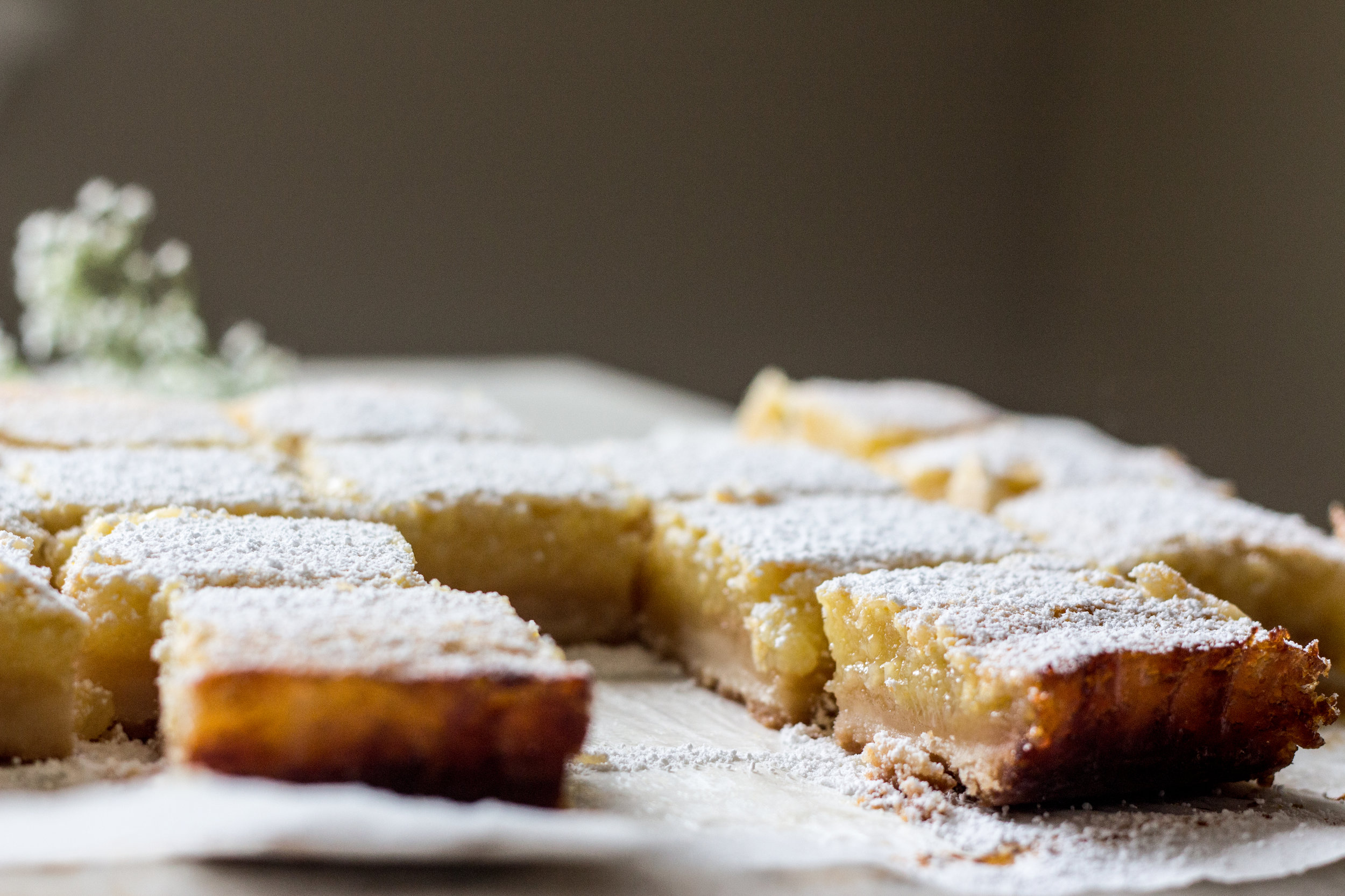 lemon bars-9.jpg