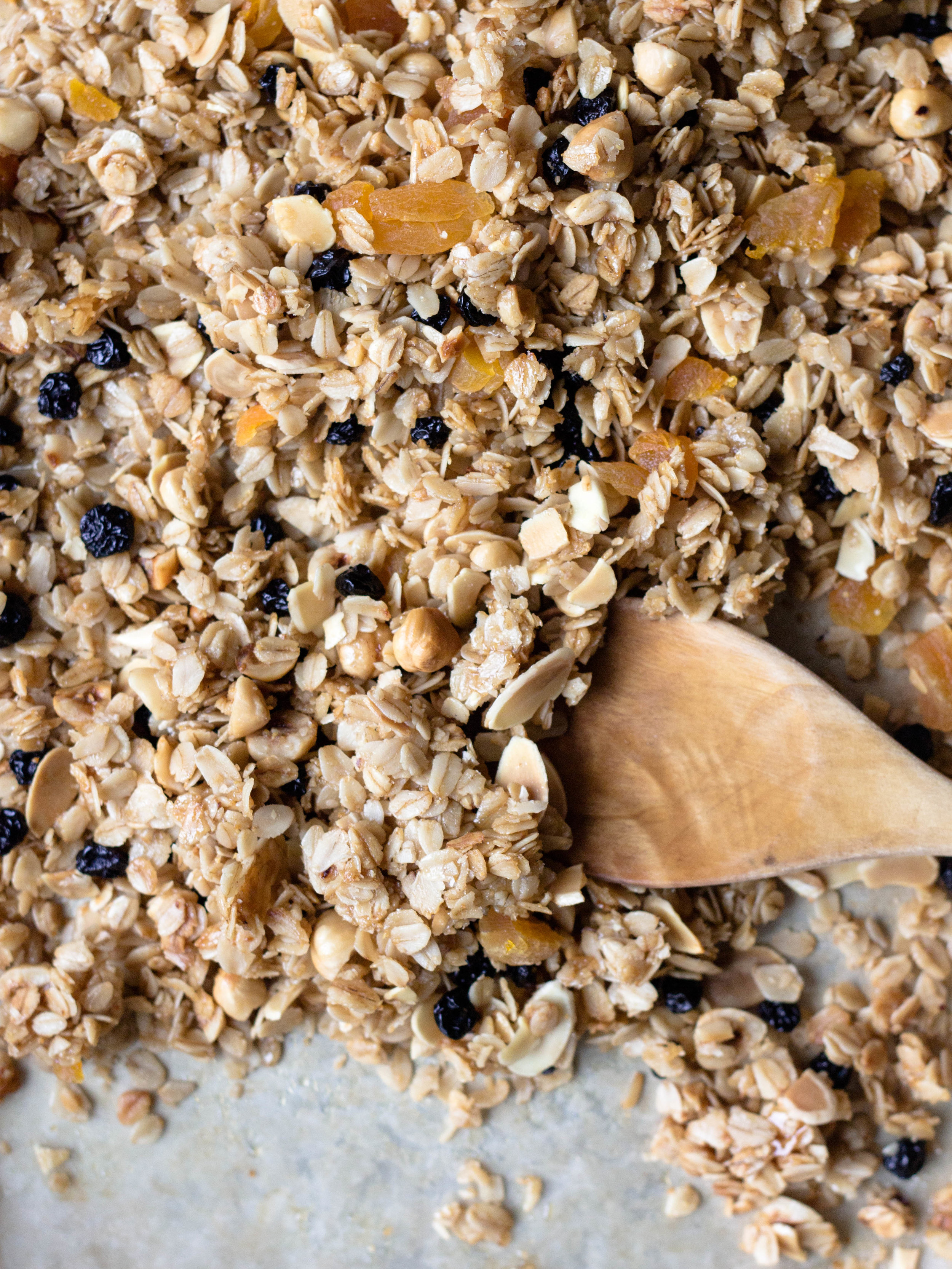 honey fruit and nut granola-9.jpg