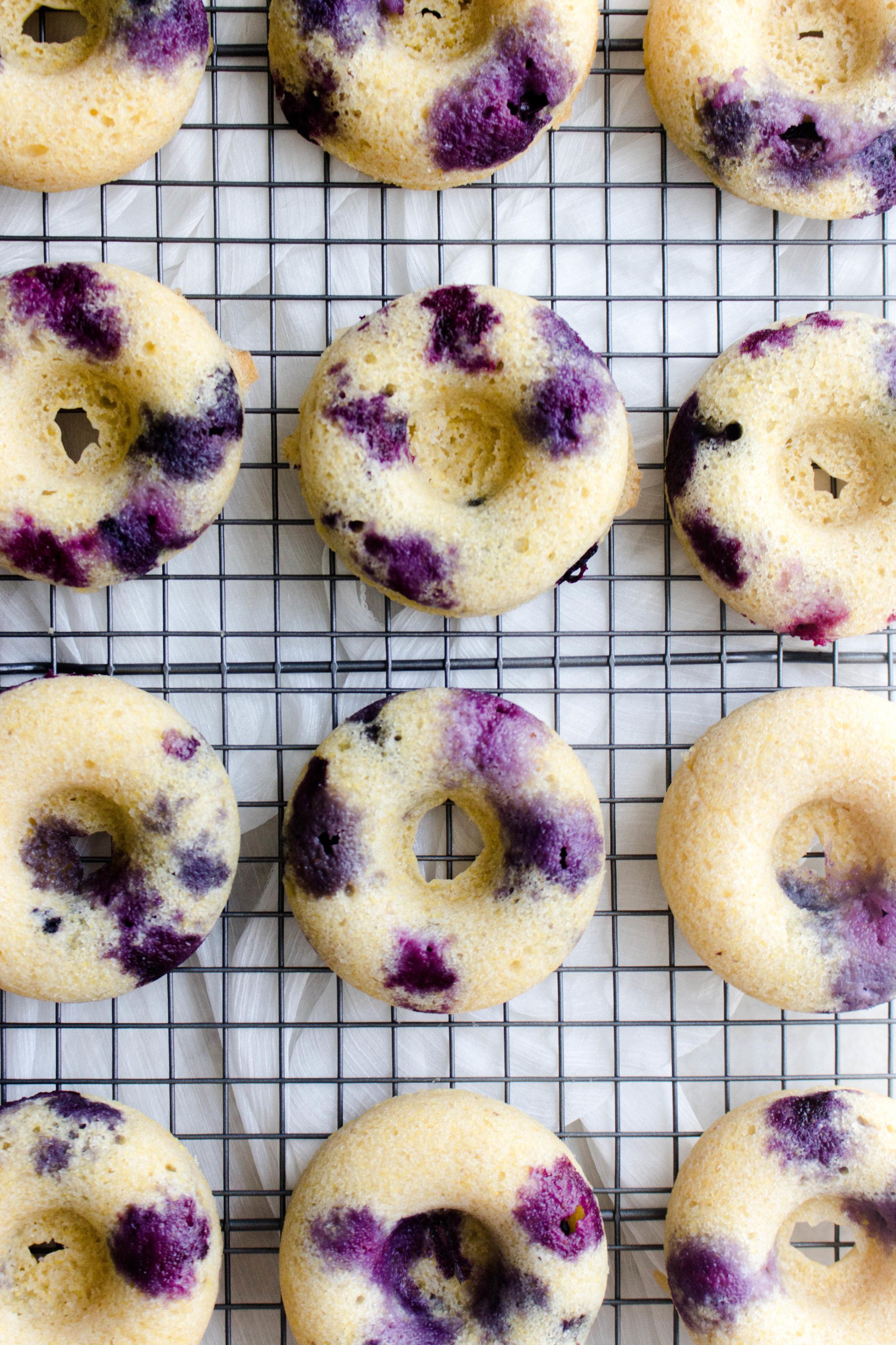 baked blueberry lemon cornmeal donuts-8.jpg