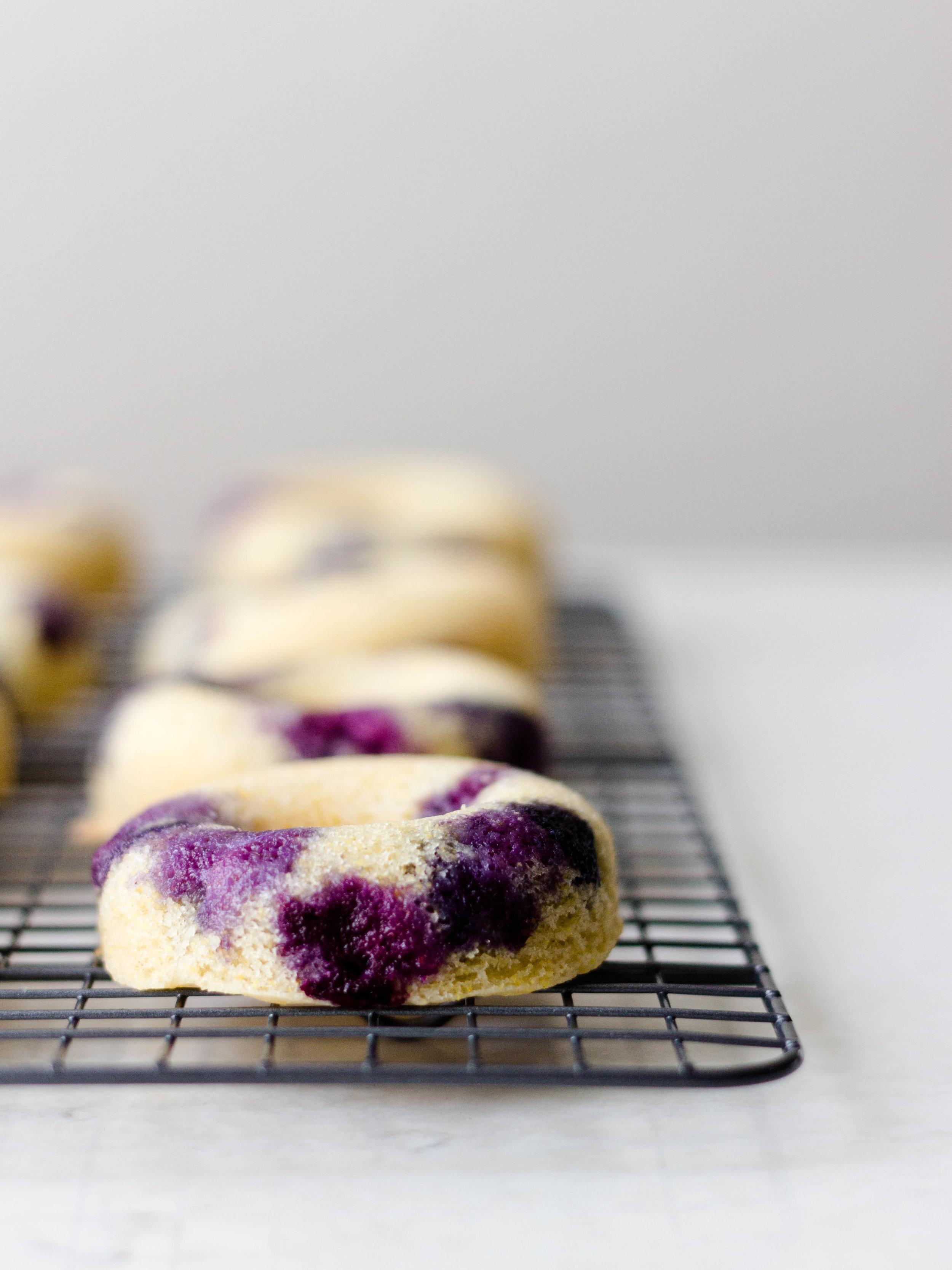 baked blueberry lemon cornmeal donuts-11.jpg