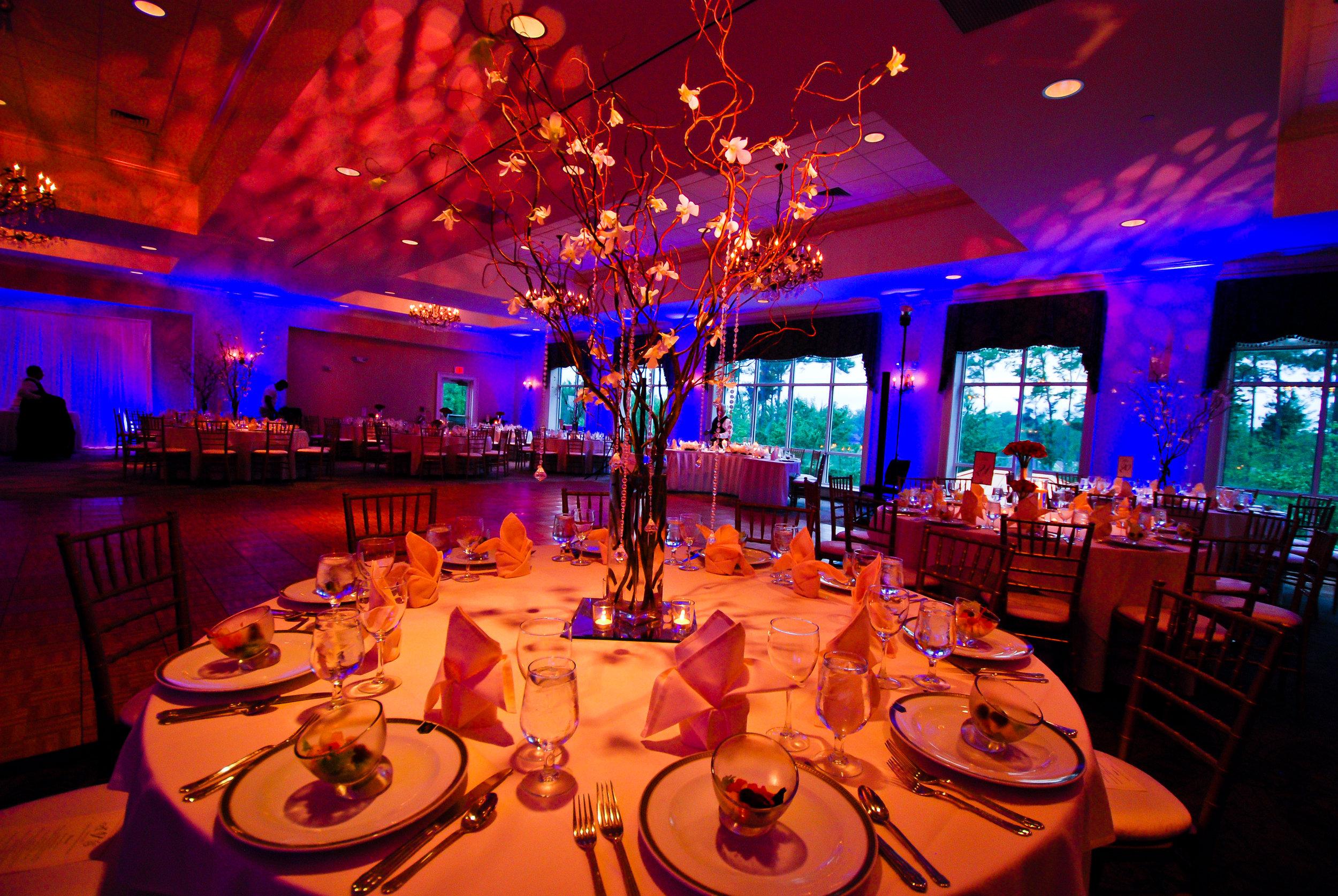 sneha-reception-0172-iwp-photography.jpg