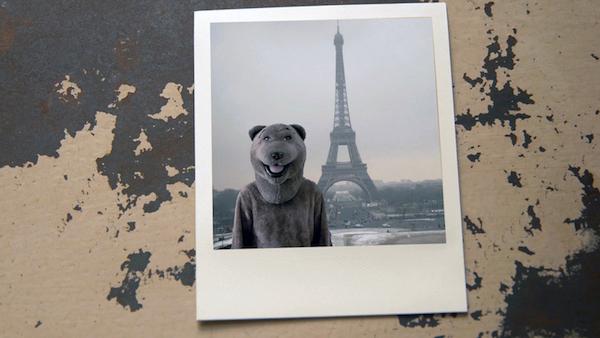 bear eiffel tower copy.jpg