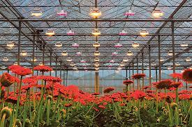 Grow Facility.jpg