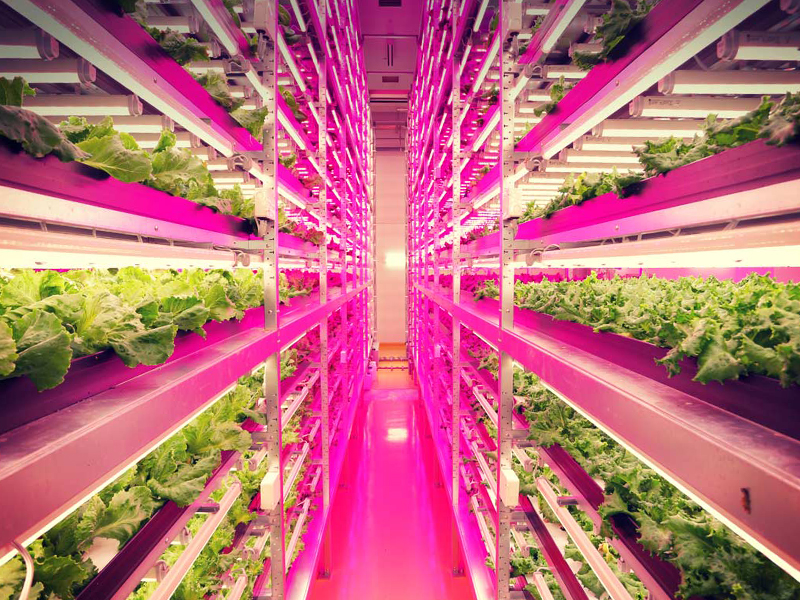 AcquiFlow Solutions - Outdoor, greenhouse, and indoor controlled-environmental agriculture.