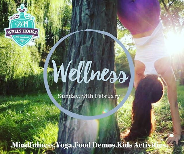 As part of freedomfit @wells_house_and_gardens  are hosting Wells for Wellness on Sunday, 18th of February! There will be lots going on for all the family including yoga, mindfulness, kids activities and more! 👊 . #freedomfitnorthwexford #fitness #health #fun #wexford #gorey #familyfit #local #freedomfitevents #lovegorey #visitwexford #irelandsancienteast