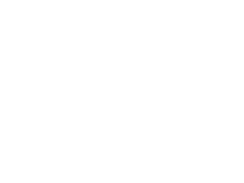 dunks.png