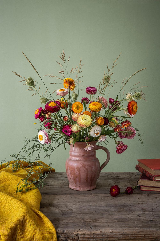 strawflower_michaela_gabler.jpg