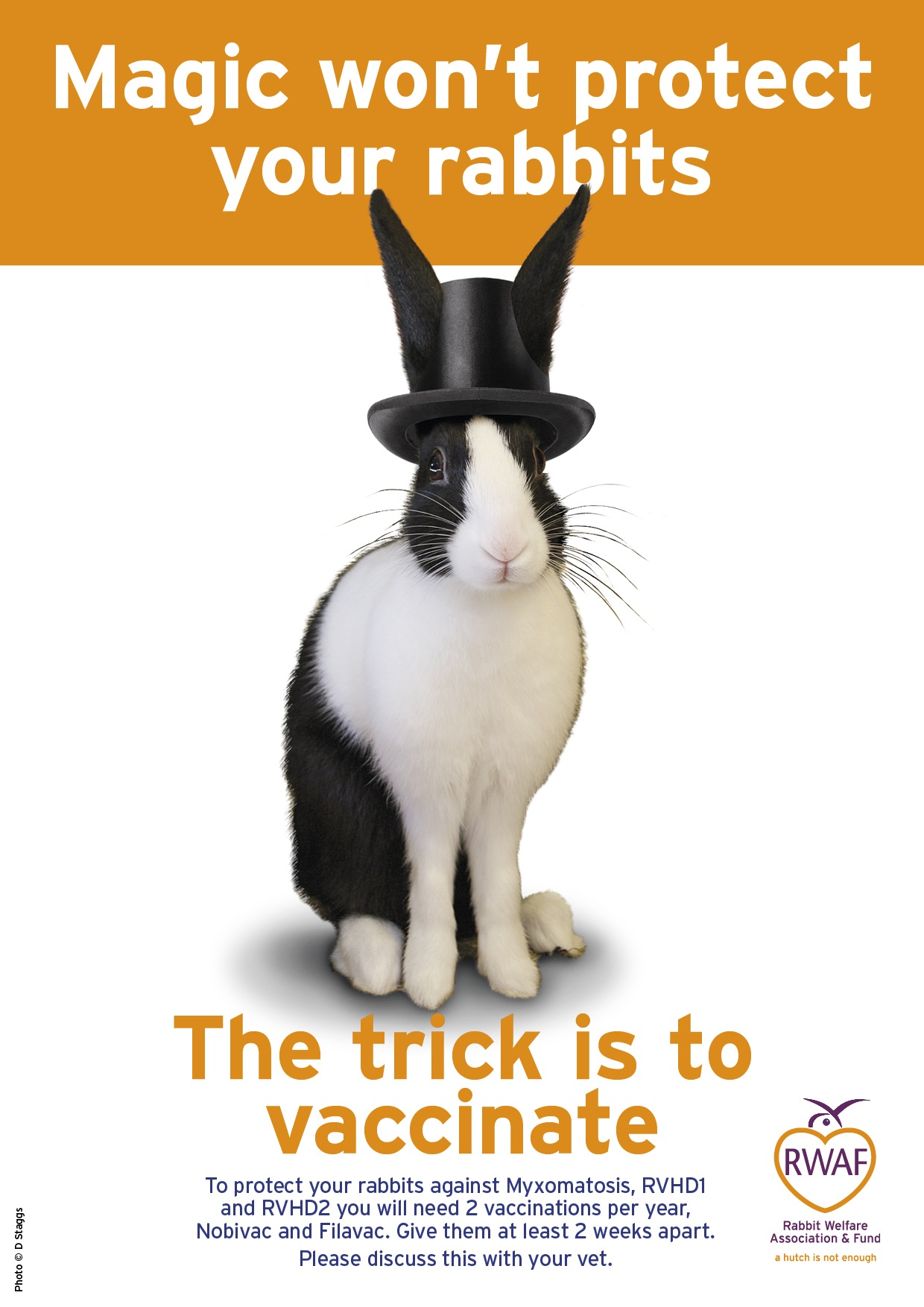 Vaccination poster by the Rabbit Welfare Association & Fund