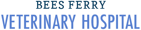 Bees Ferry Vet | Charleston, SC