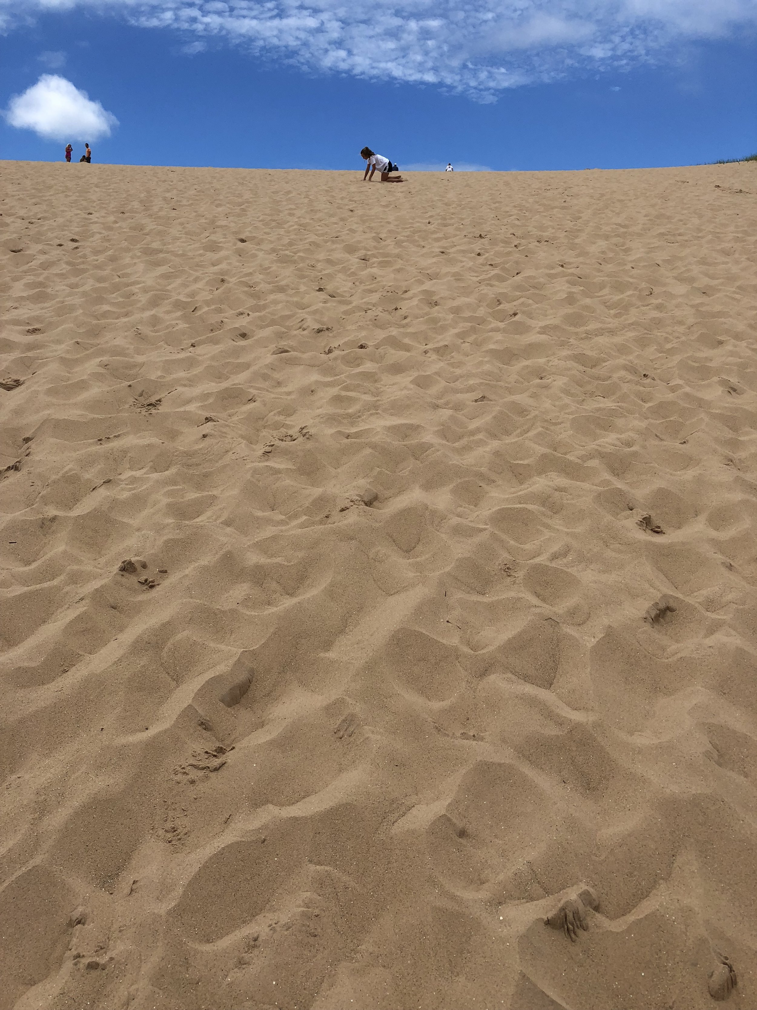 The long, arduous climb up the dune may bring some 13 year olds to their very knees.