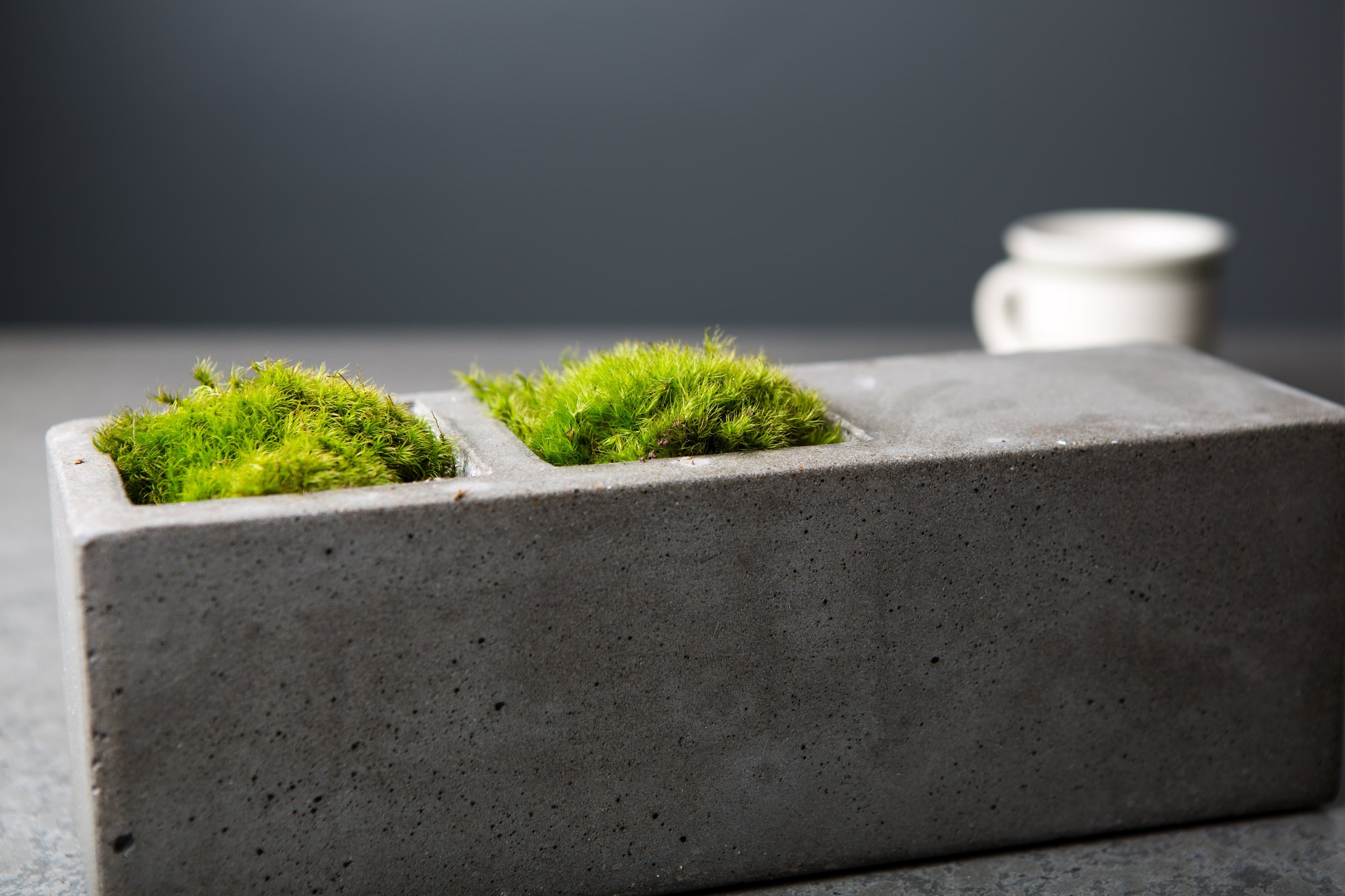 A small tabletop planter. This planter comes in multiple sizes and can be found in our store.