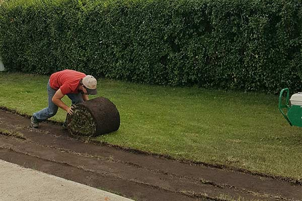 Laying-sod.jpg