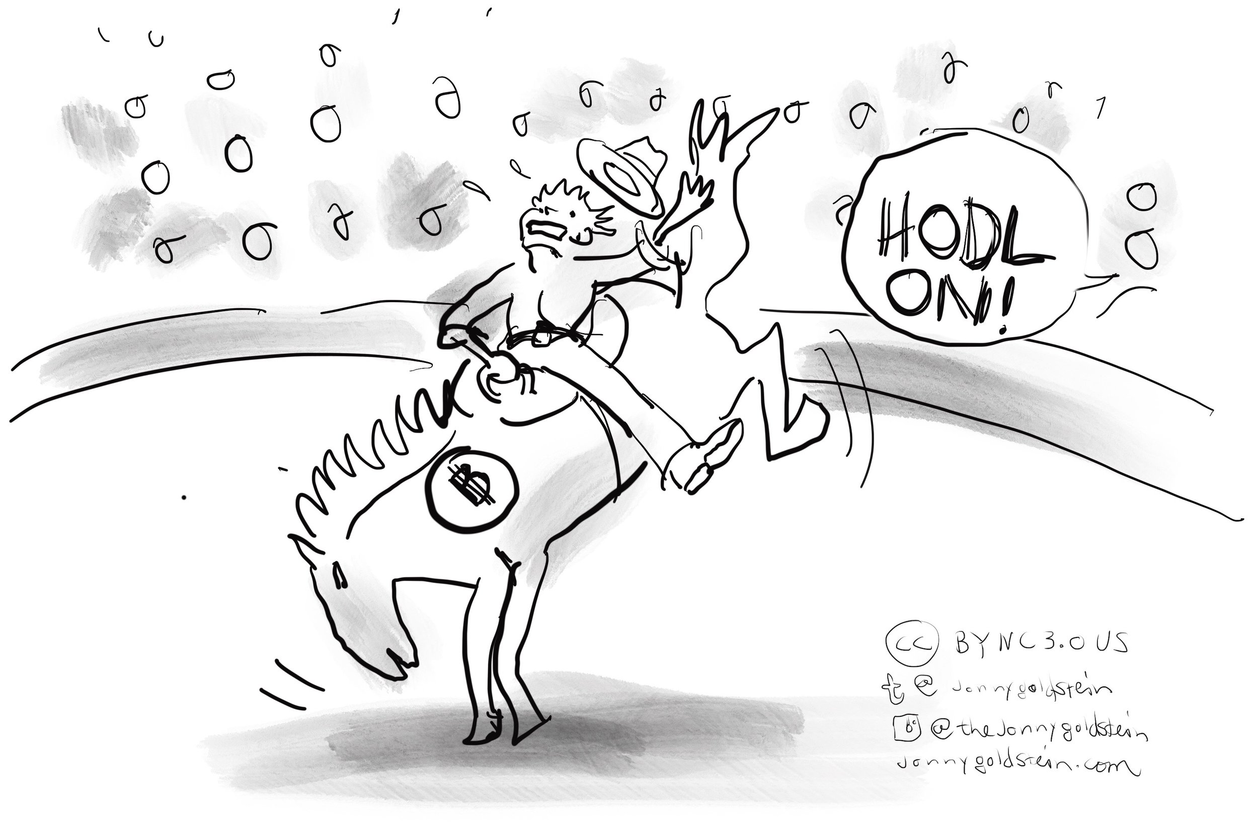 hodl-on-bitcoin-jonny-goldstein.JPG