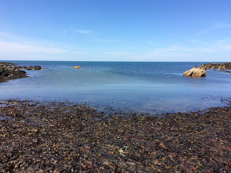 slack tide and vortex, 2017, albumen crystoleum, in progress