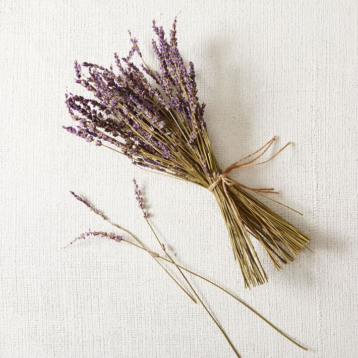 lavender-bunch-large-o.jpg