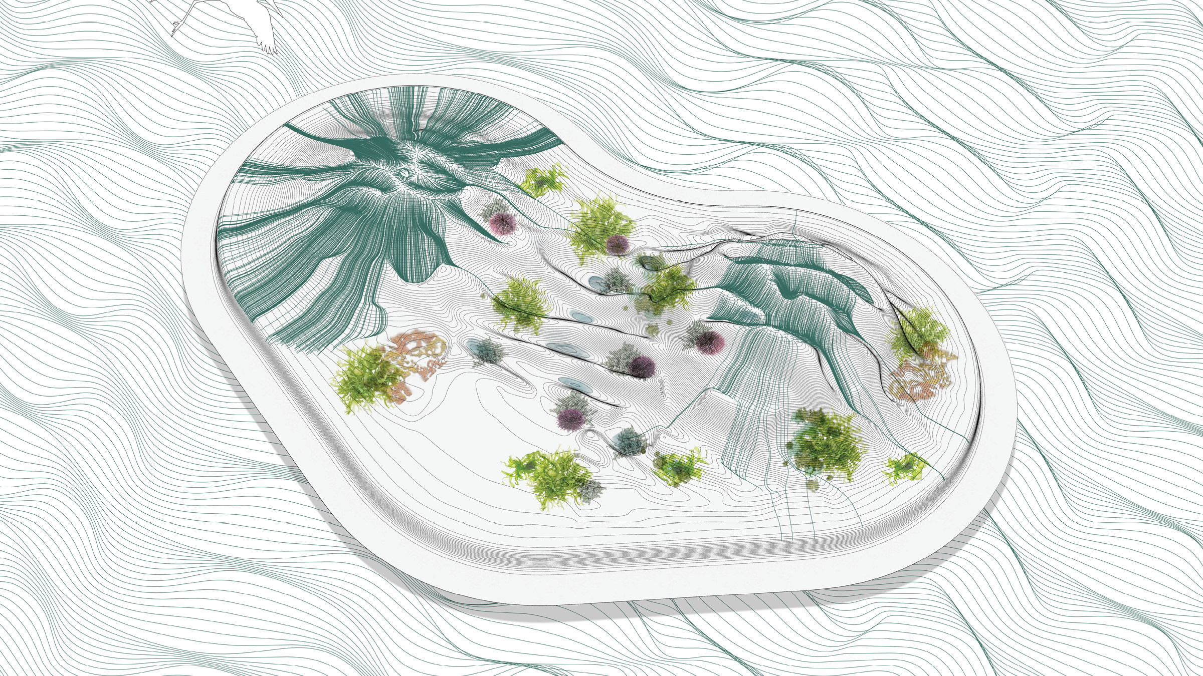 buoyant ecologies float lab28.png