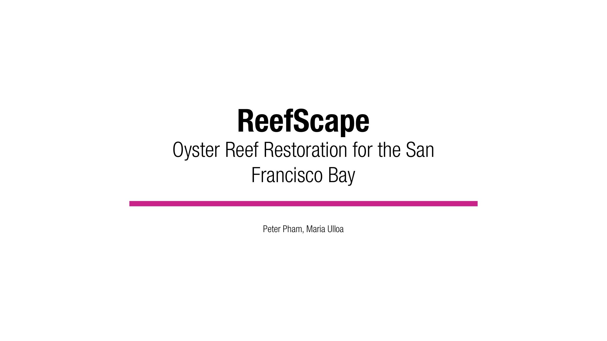 ReefScape 1.jpg
