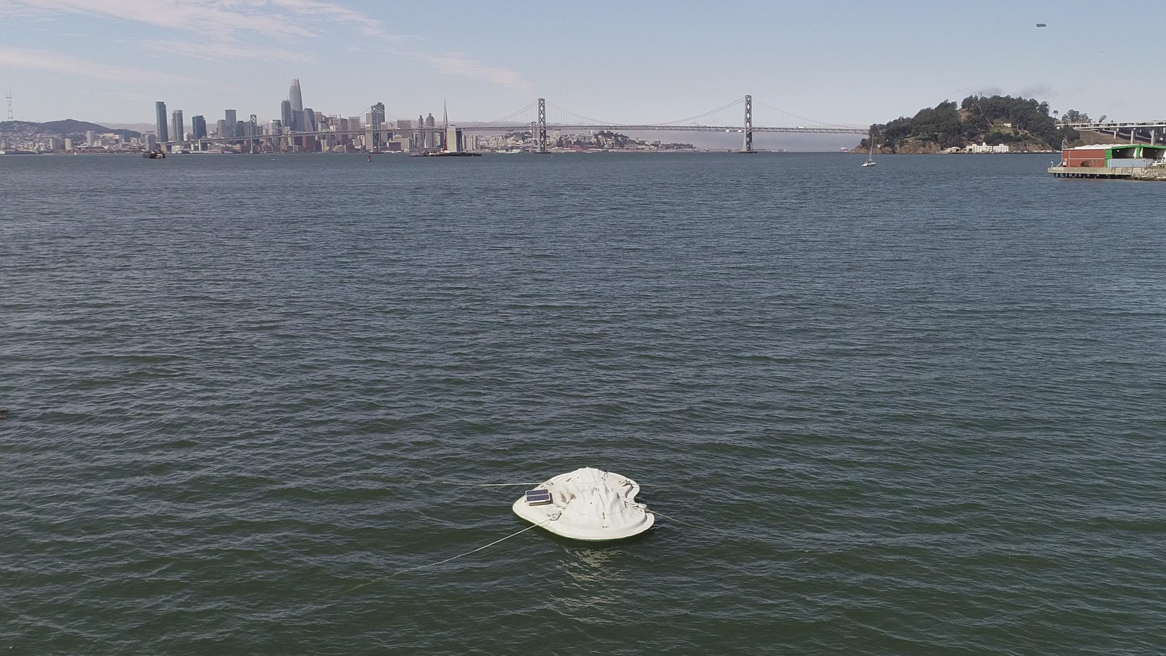 buoyant ecologies float lab32.png