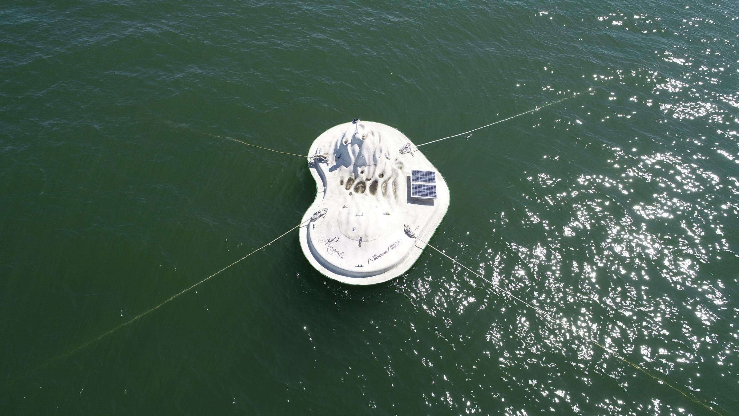 buoyant ecologies float lab33.png