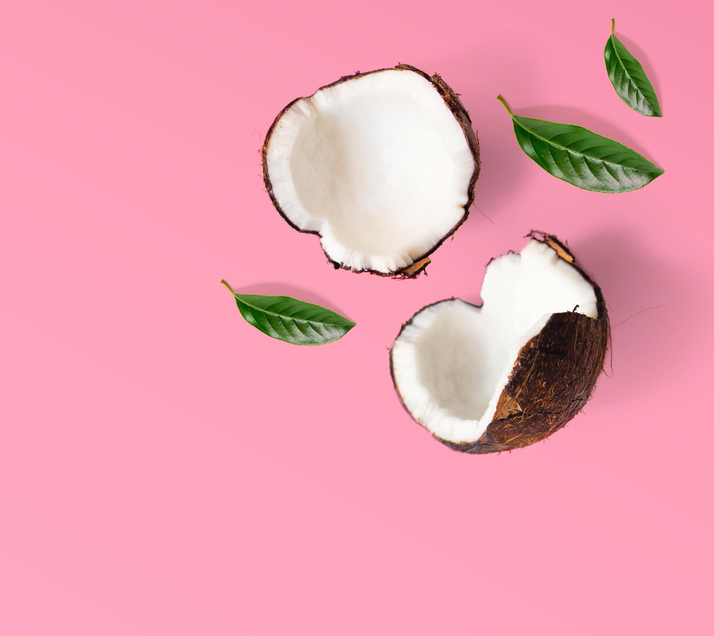 coconut_on_pink.jpg
