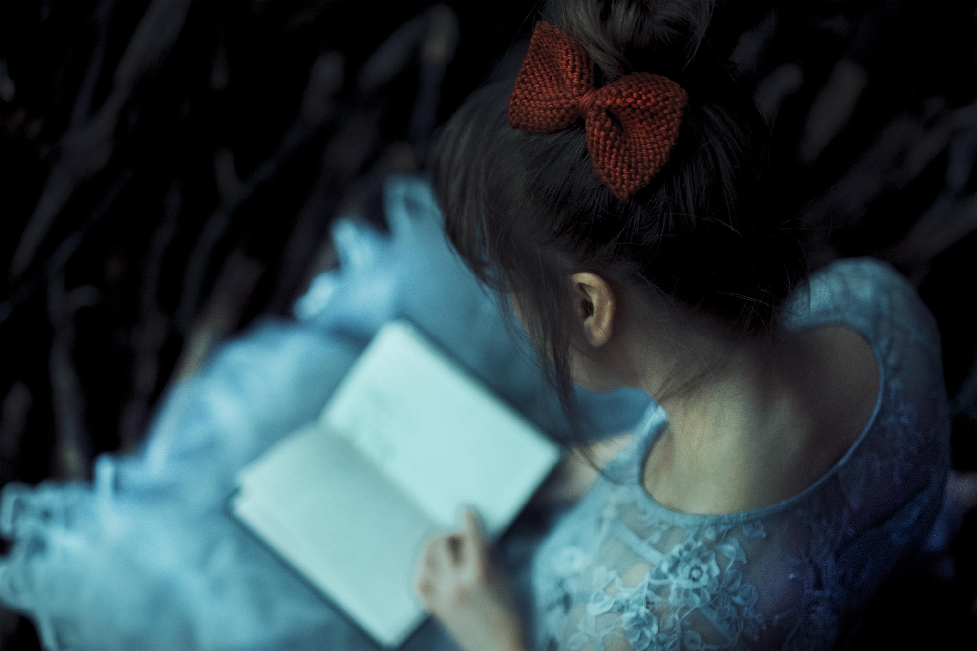 A red bow and a book