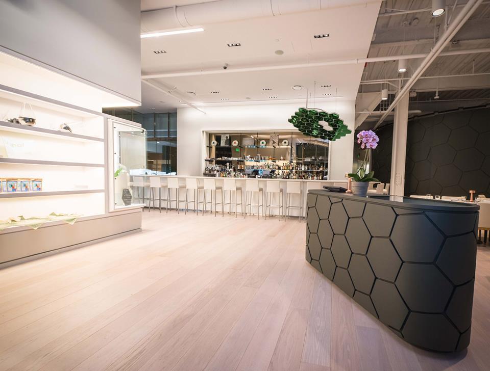 Cafe Artscience 01.jpg