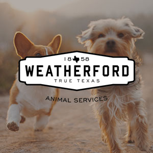Weatherford Animal Shelter    Clean and maintain kennels and animals. Blankets/ towel/bottled water donations also accepted. Volunteers must be 18 or older.    817-598-4111     ci.weatherford.tx.us/15/Animal-Shelter