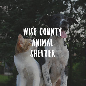 Wise County Animal Shelter    Need blankets/ towel donations/walk animals/kennels    *bottle water donations also accepted    940-627-7577