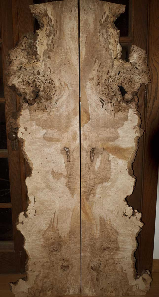 JCH_burl maple 2_01.jpg