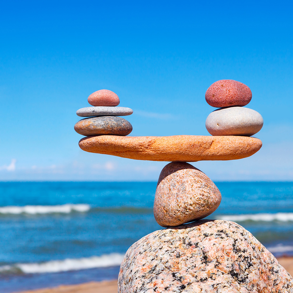 A Balanced Approach  In order to achieve a balance between risk and return we must weigh an investor's objectives, time horizon, risk tolerance and investment knowledge.