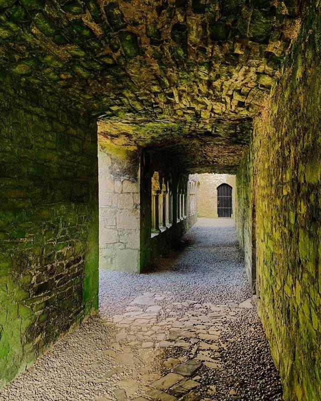 Passages and portals 🍀🌈🧚🏽♀️🌼💖🌼🧚🏽♀️🌈🎉