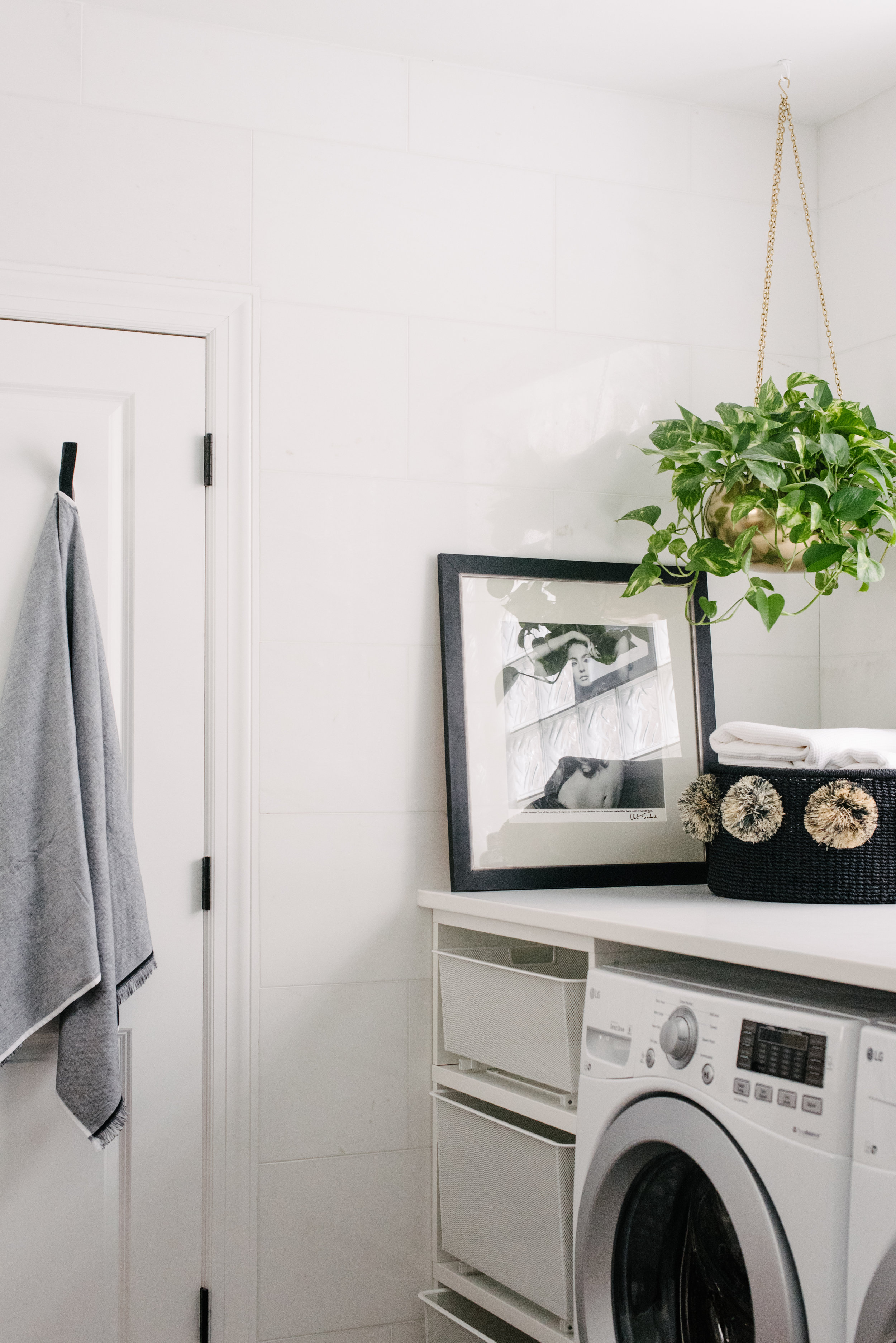 laundry and hanging plant.jpg